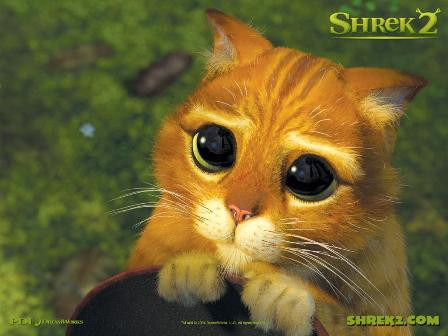 Con poner cara de gatito mojado no basta... | Lo que no sabes...
