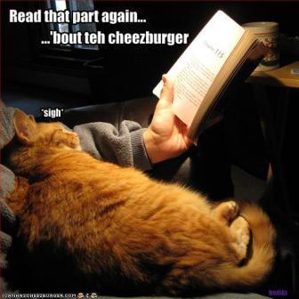 ¿De qué trata un libro?